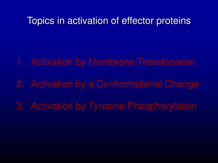 Topics in activation of effector proteins
