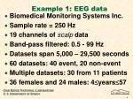 example 1 eeg data