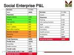 social enterprise p l