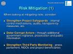 risk mitigation 1