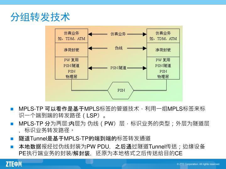MPLS-TP 可以看作是基于MPLS标签的管道技术,利用一组MPLS标签来标识一个端到端的转发路径(LSP)。