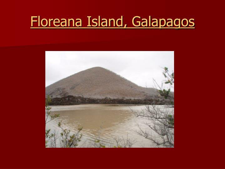 Floreana Island, Galapagos