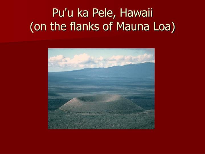 Pu'u ka Pele, Hawaii