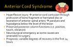 anterior cord syndrome