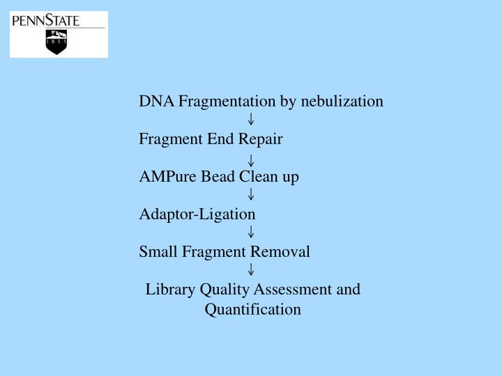 DNA Fragmentation by nebulization