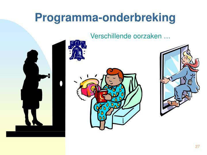 Programma-onderbreking