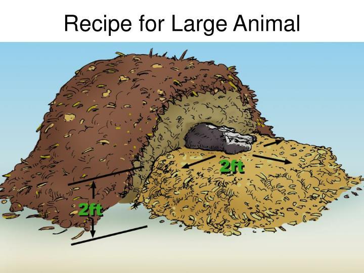 Recipe for Large Animal