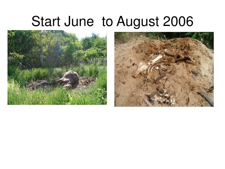 Start June  to August 2006