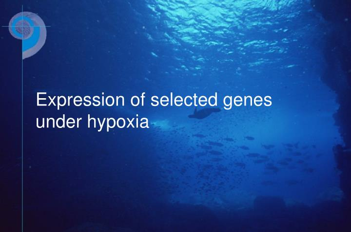 Expression of selected genes