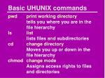 basic uhunix commands