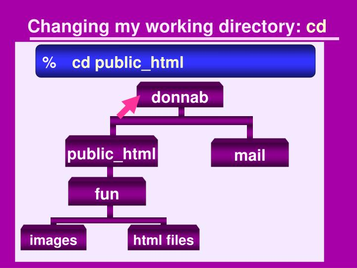 Changing my working directory: