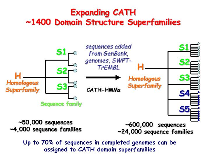 Expanding CATH