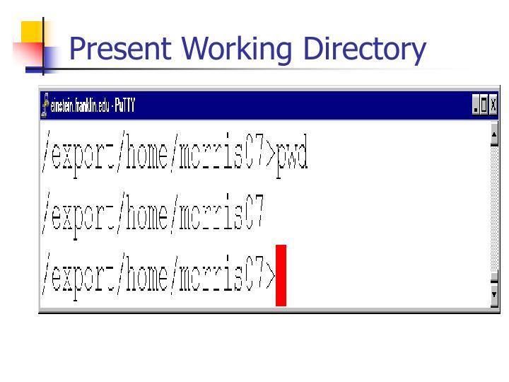 Present Working Directory