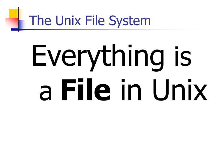The Unix File System