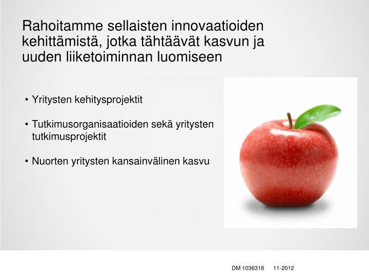Rahoitamme sellaisten innovaatioiden kehittämistä, jotka tähtäävät kasvun ja