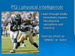 pq physical intelligence