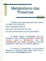 metabolismo das prote nas