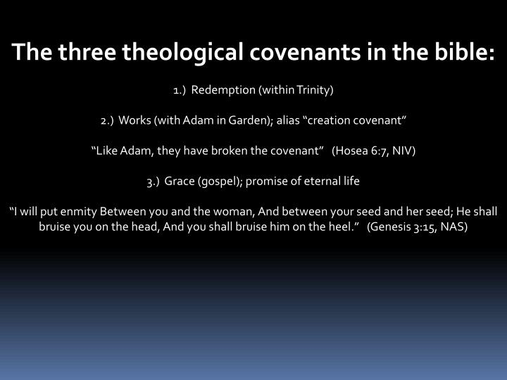 The three theological covenants in the bible: