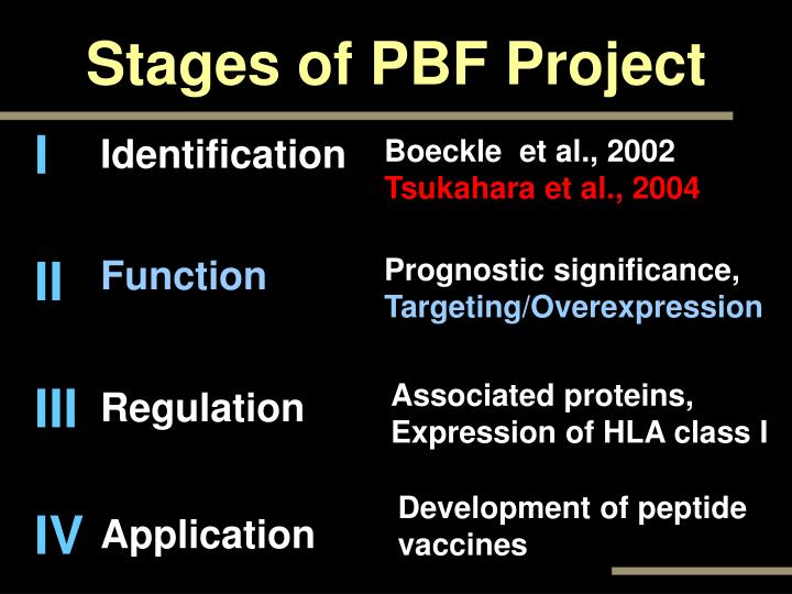 Stages of PBF Project