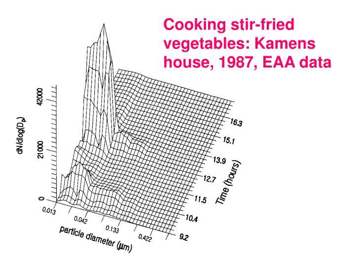 Cooking stir-fried vegetables: Kamens house, 1987, EAA data