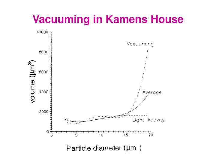 Vacuuming in Kamens House
