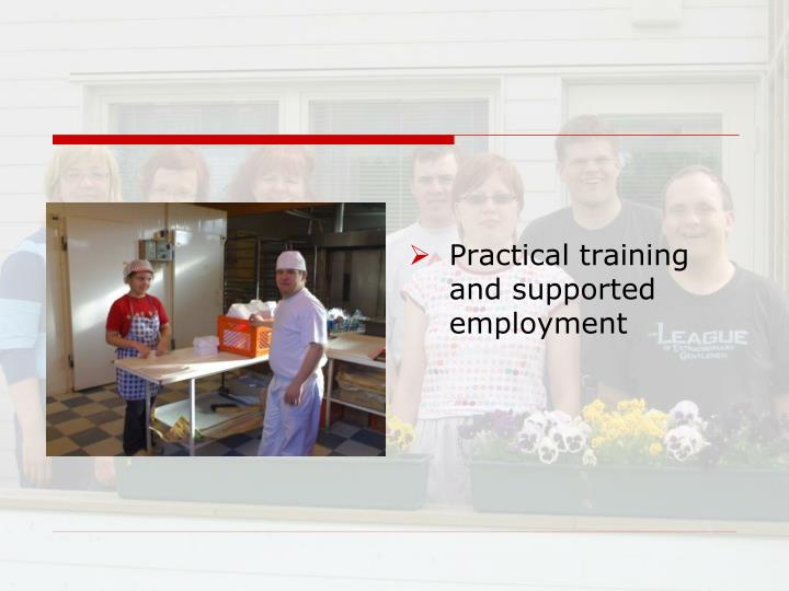 Practical training and supported employment