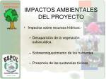 impactos ambientales del proyecto1