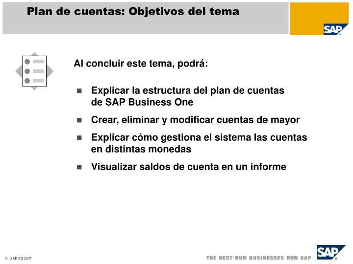 Plan de cuentas: Objetivos del tema