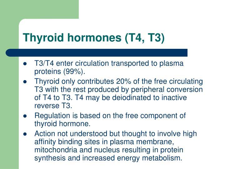 Thyroid hormones (T4, T3)