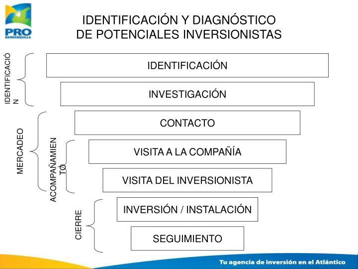 IDENTIFICACIÓN Y DIAGNÓSTICO