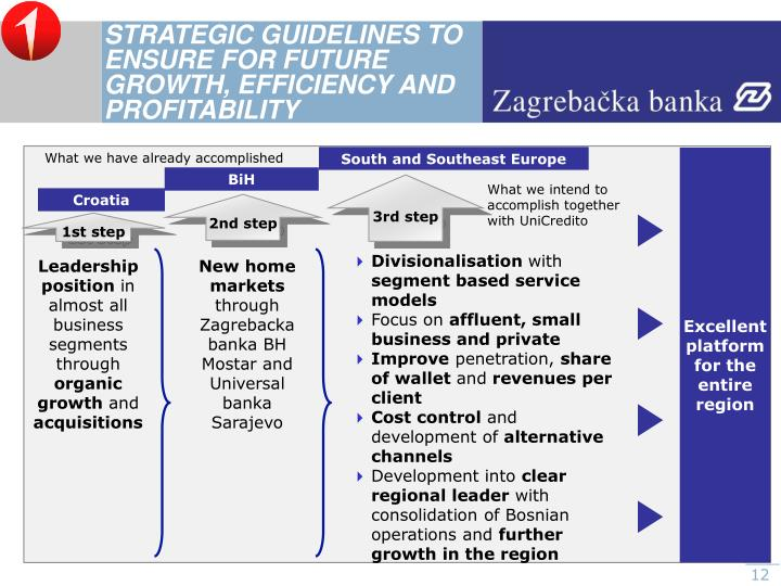 STRATEGIC GUIDELINES TO ENSURE FOR FUTURE GROWTH, EFFICIENCY AND PROFITABILITY