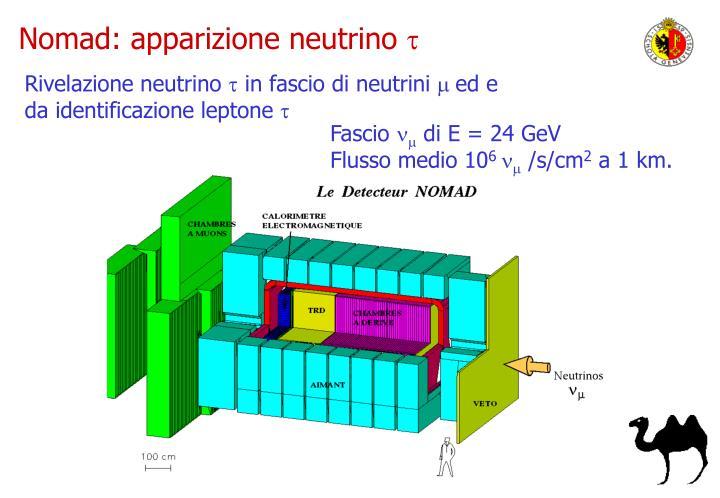 Nomad: apparizione neutrino