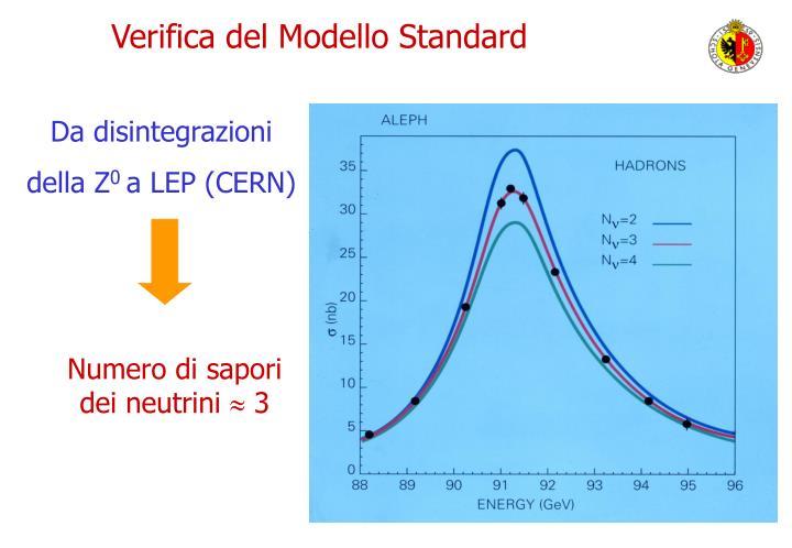 Verifica del Modello Standard