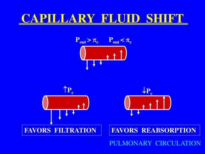 CAPILLARY  FLUID  SHIFT