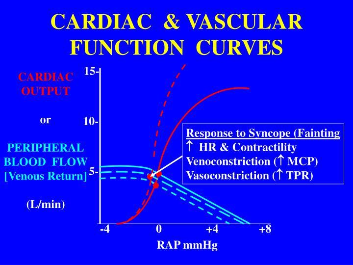 CARDIAC  & VASCULAR  FUNCTION  CURVES