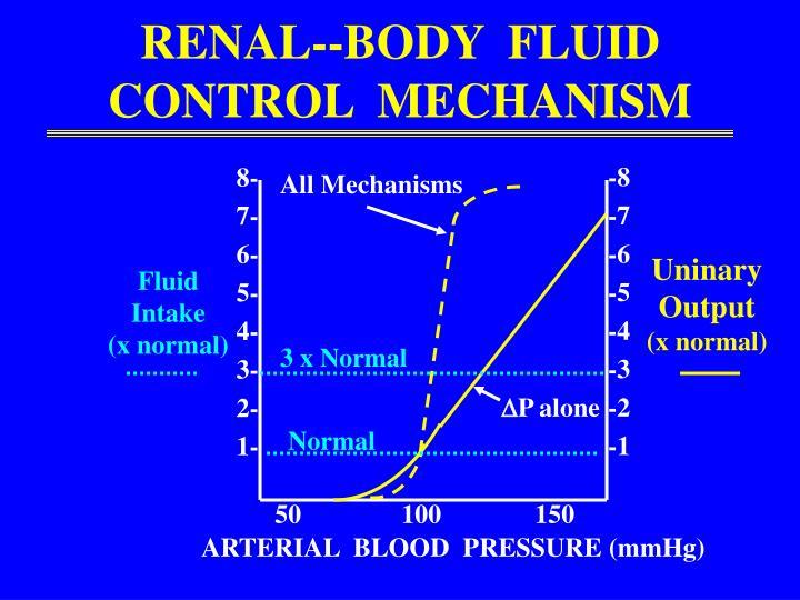 RENAL--BODY  FLUID CONTROL  MECHANISM
