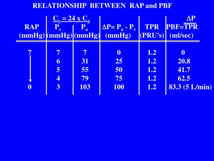 RELATIONSHIP  BETWEEN  RAP and PBF