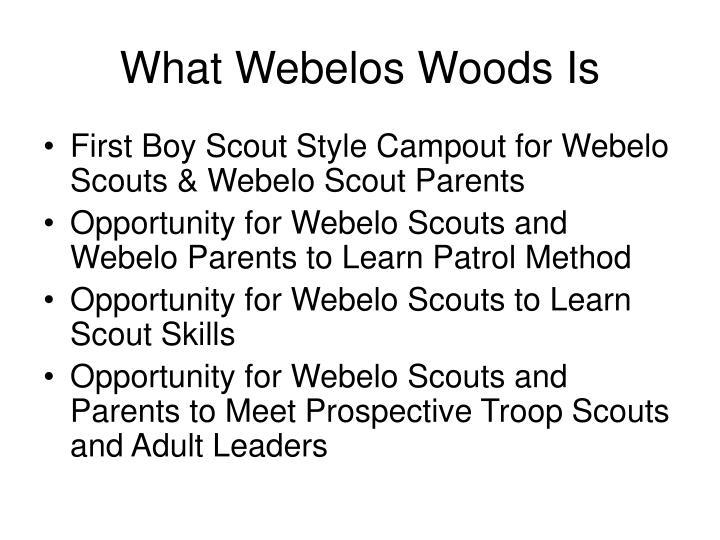 What Webelos Woods Is