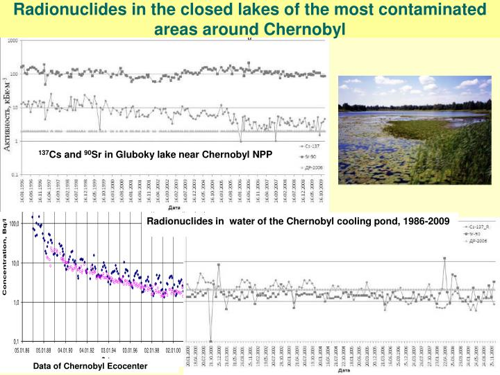 Radionuclides in the closed lakes of the most contaminated areas around Chernobyl