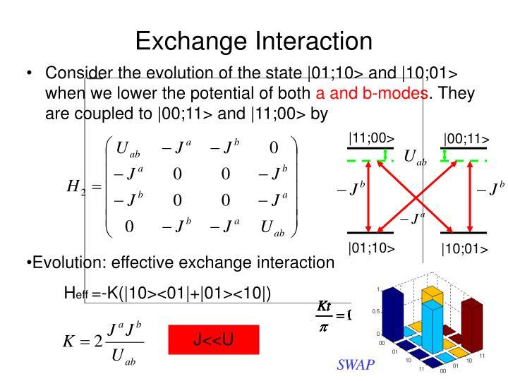 Exchange Interaction