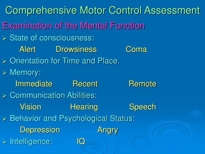 Comprehensive Motor Control Assessment