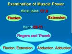 examination of muscle power2