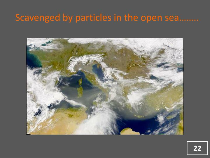 Scavenged by particles in the open sea……..