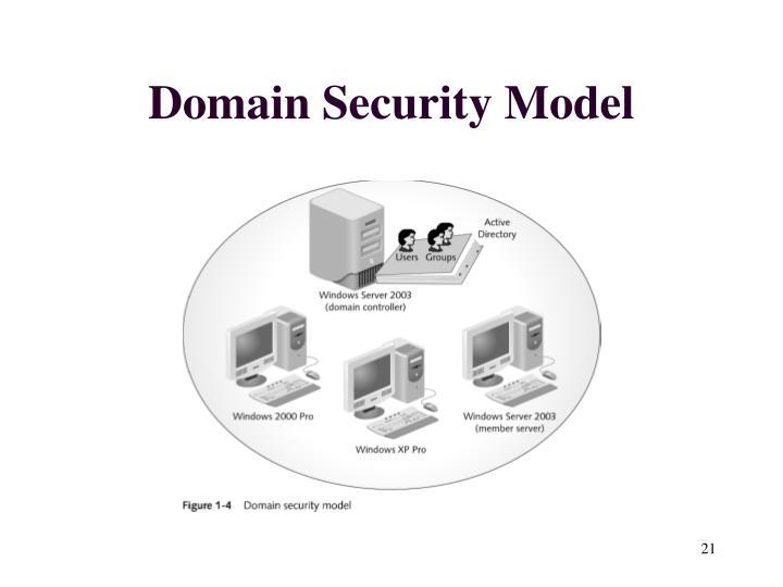 Domain Security Model