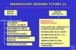 organizaci n sesiones tutor a 1