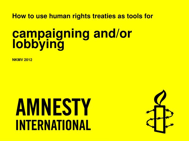 how to use human rights treaties as tools for campaigning and or lobbying nkmv 2012