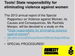 tools state responsibility for eliminating violence against women