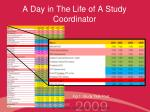 a day in the life of a study coordinator9