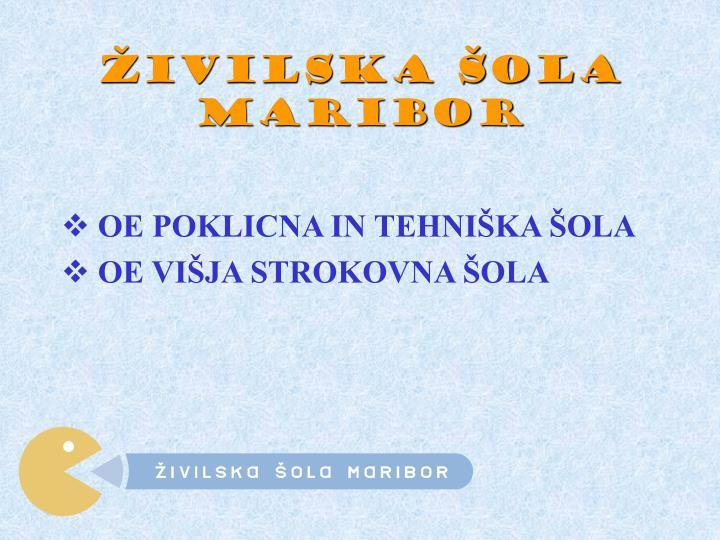 Živilska šola Maribor