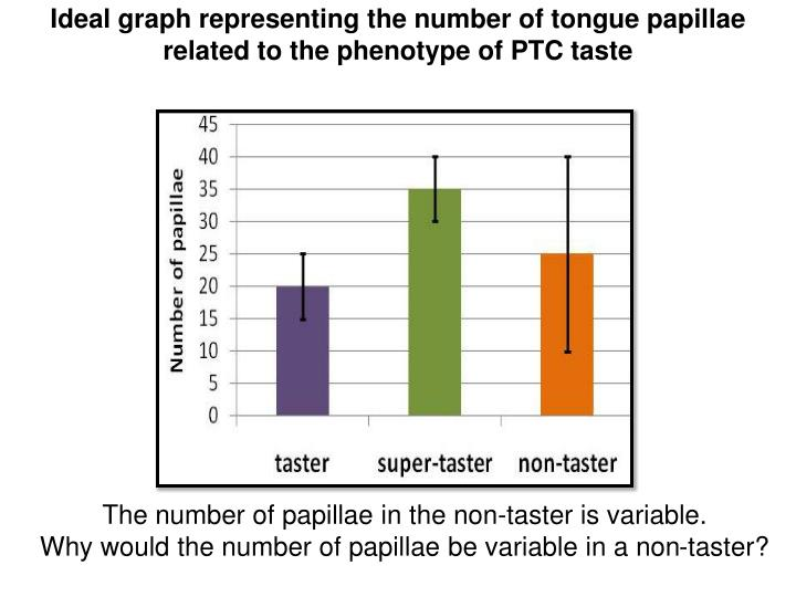 Ideal graph representing the number of tongue papillae related to the phenotype of PTC taste